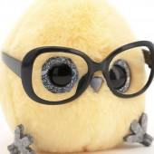 КТОтик в больших очках в ассортименте