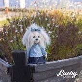 Lucky Mimi: Джинсовое лето