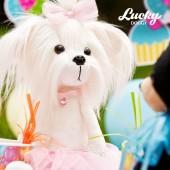 Lucky Mimi: Розочка