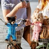 Lucky Yoyo: Фитнес