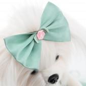 Lucky Mimi: Розовый бутон