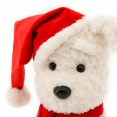 Пёс Санта