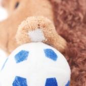 Ёжик Колюнчик с мячиком