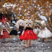 Lucky Yoyo: Фиеста с каркасом