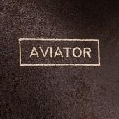 Бегемот Авиатор