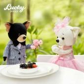 Lucky Lili: Блеск